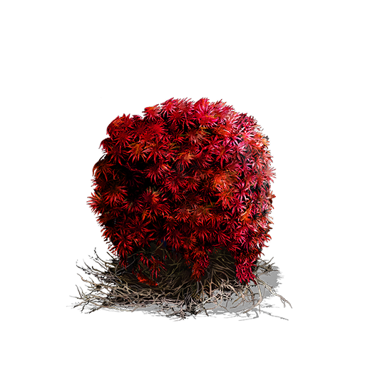 Bloodred%20Moss%20Clump.png