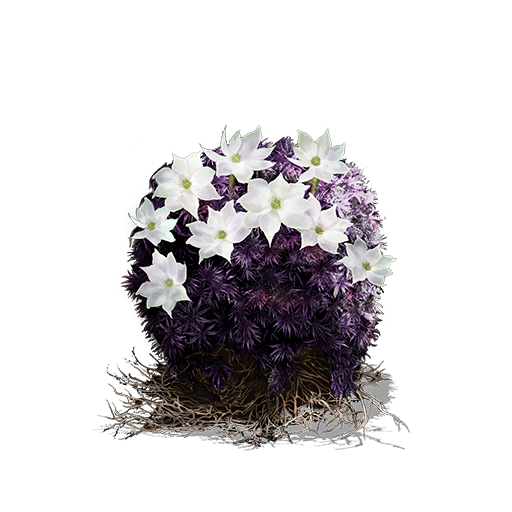 Blooming%20Purple%20Moss%20Clump.png