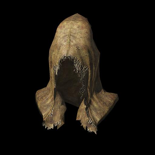 Conjurator Hood Image