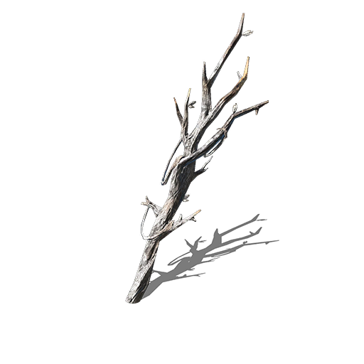 Witchtree Branch Image