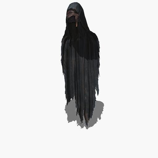 Ringed Knight Hood Image