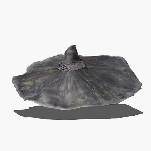 Sage's Big Hat Image